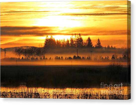 Canvas Print - Sunrise Over The Wetlands by Nick Gustafson