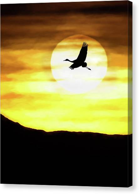 Sunset Flyway Canvas Print