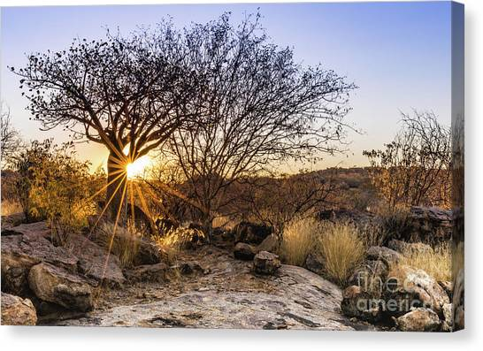 Sunset In The Erongo Bush Canvas Print