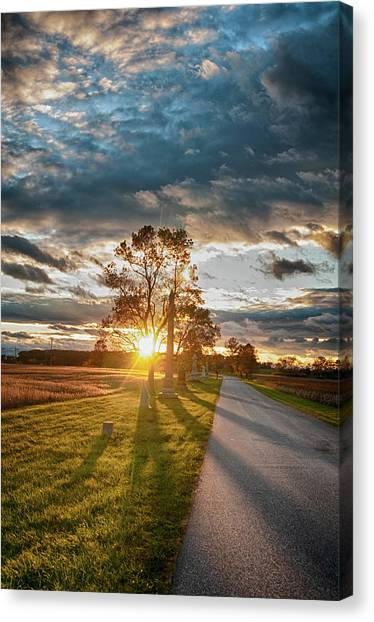 Sunset In The Tree Canvas Print