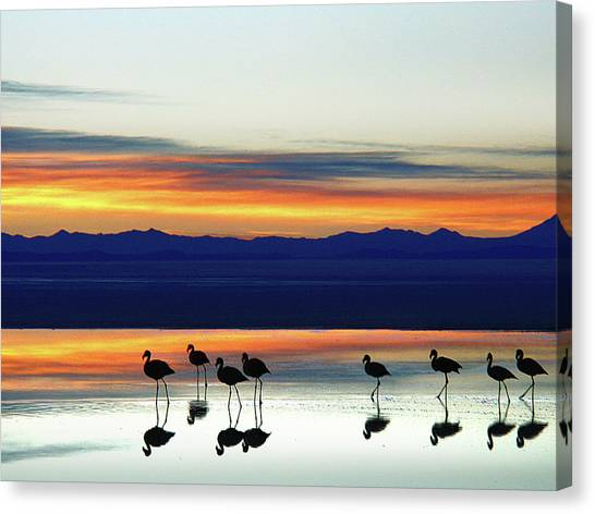 Sunset On The Uyuni Salt Desert, Bolivia Canvas Print