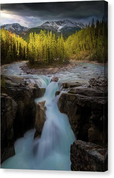 Sunwapta Falls / Alberta, Canada Canvas Print