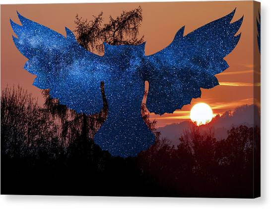 Sunset Owl Canvas Print