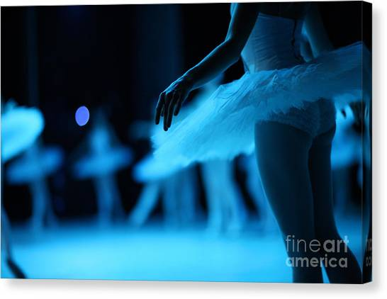 Swan Canvas Print - Swan Lake Ballet by Anna Jurkovska