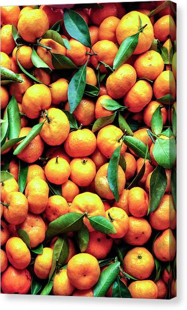 Sweet Oranges Canvas Print