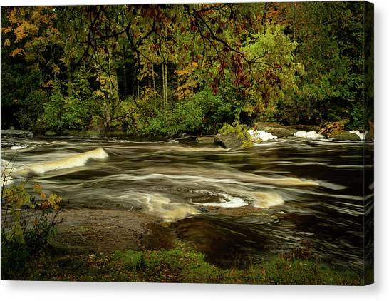 Swirling River Canvas Print