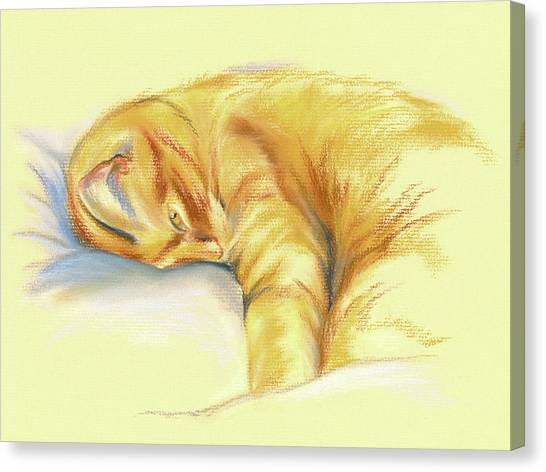 Tabby Cat Relaxed Pose Canvas Print