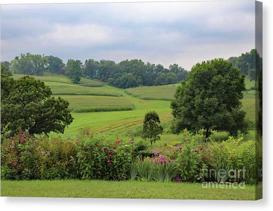 Canvas Print featuring the photograph Taliesin Landscape by PJ Boylan