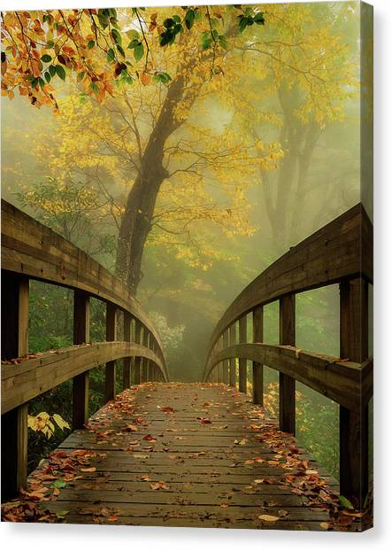Tanawha Trail Blue Ridge Parkway - Foggy Autumn Canvas Print