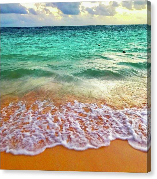 Teal Shore  Canvas Print