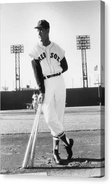 Ted Williams Canvas Print by Slim Aarons