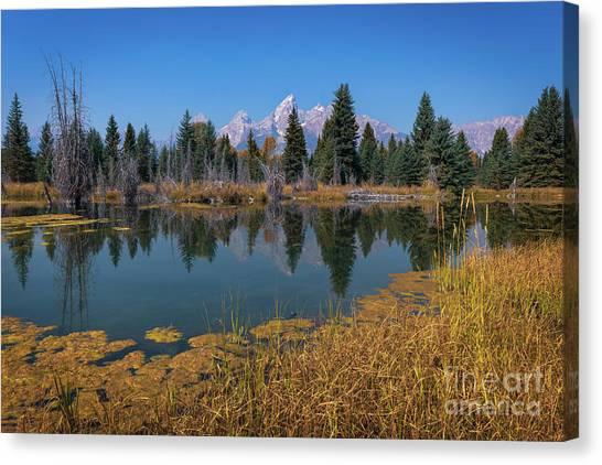 Tetons Majesty Canvas Print