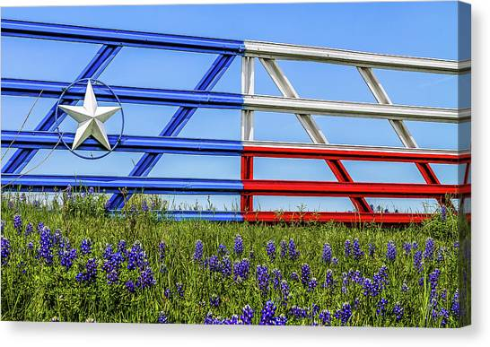 Texas Flag Painted Gate With Blue Bonnets Canvas Print