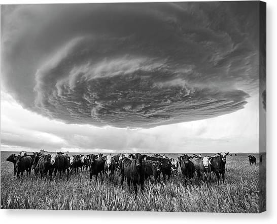 Texas Panhandle Meso Canvas Print