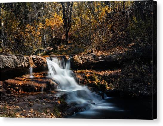 Canvas Print - The Autumn Cascades Of Arizona  by Saija Lehtonen