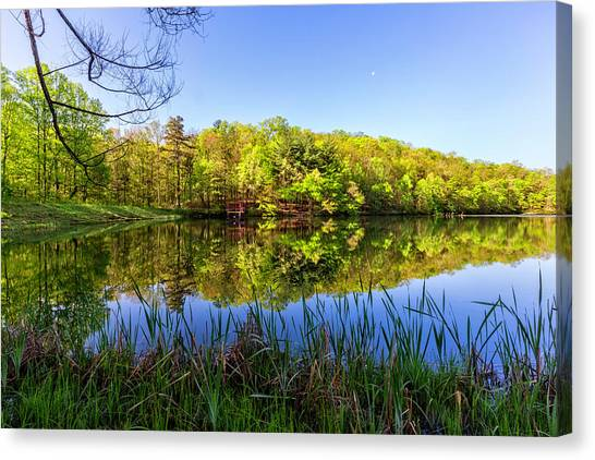 Canvas Print - The Beauty Of A Blue Sky by Debra and Dave Vanderlaan