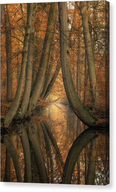 Martin Canvas Print - The Bent Ones by Martin Podt