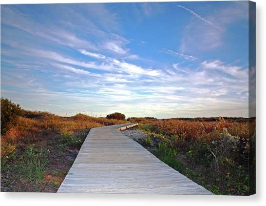 Marsh Grass Canvas Print - The Boardwalk by Daniela Duncan