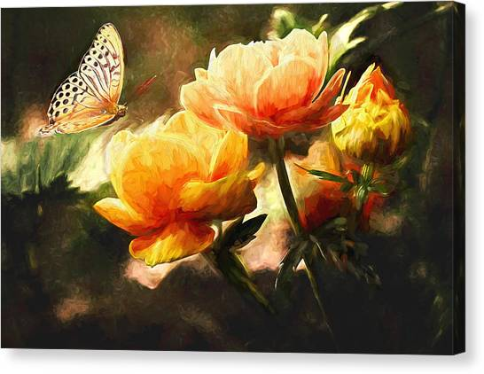 Sulfur Butterfly Canvas Print - The Butterfly by Sean Duffy