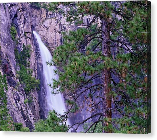 The Cascades From Yosemite National Canvas Print by Tim Fitzharris/ Minden Pictures