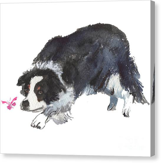 The Collie And Pink Butterfly Canvas Print