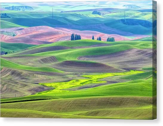 The Color Palette Of The Palouse Canvas Print