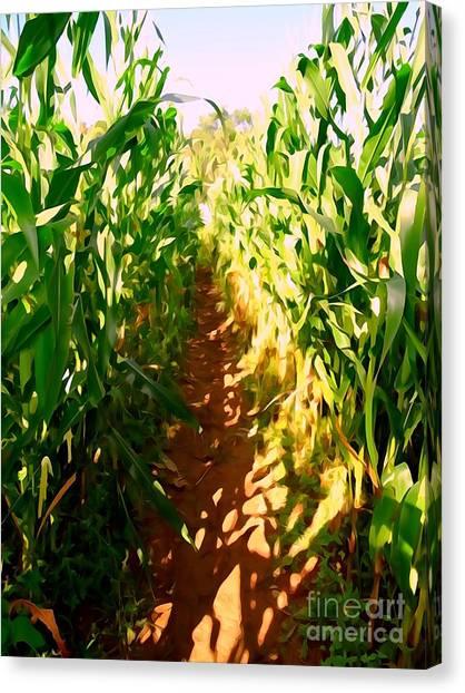 Corn Maze Canvas Print - The Corn Maze #2 by Ed Weidman