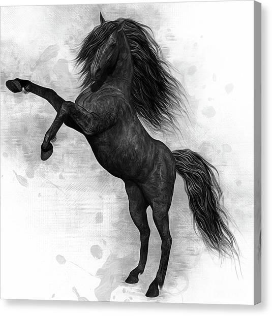 Black Stallion Canvas Print - The Dark Horse by Ian Mitchell