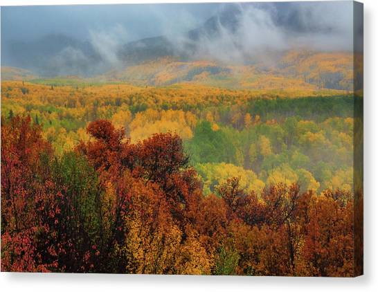 The Feeling Of Fall Canvas Print