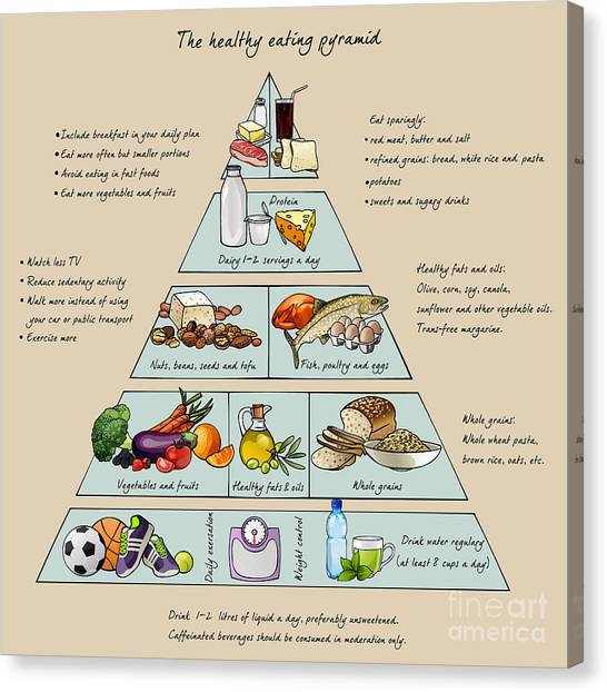 Protein Canvas Print - The Healthy Eating Pyramid. Colorful by Dalmingo