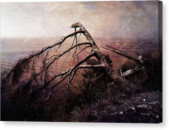 Canvas Print featuring the photograph The Invisible Force by Randi Grace Nilsberg