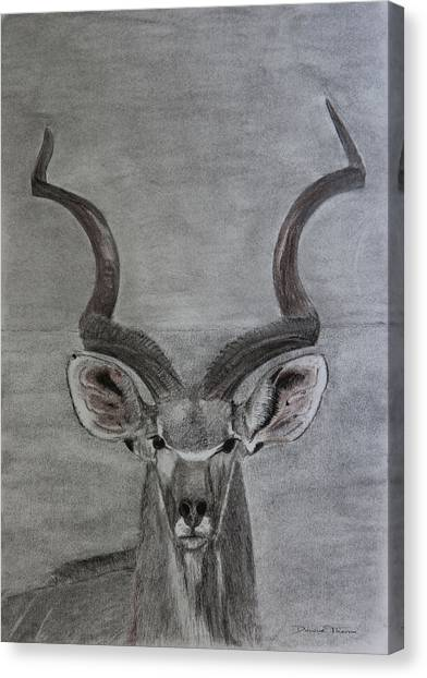 The Kudu Canvas Print