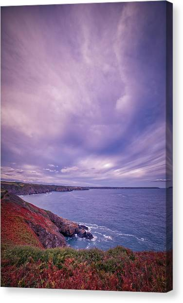 The Lizard Point Canvas Print