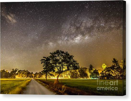 The Milky Way And The Tree Stand Alone Canvas Print by A.aizat