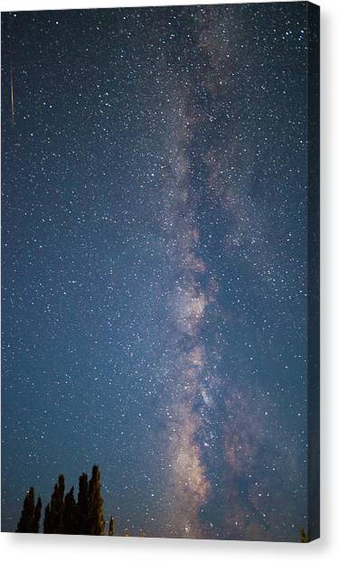The Milky Way In Arizona Canvas Print