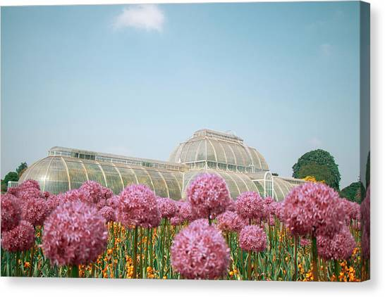 The Palm House Canvas Print