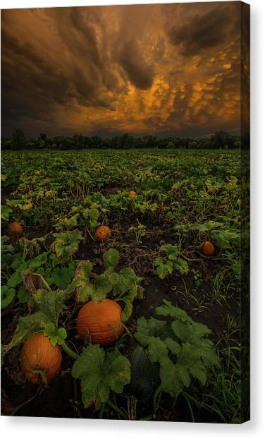 Pumpkin Patch Canvas Print - The Patch by Aaron J Groen