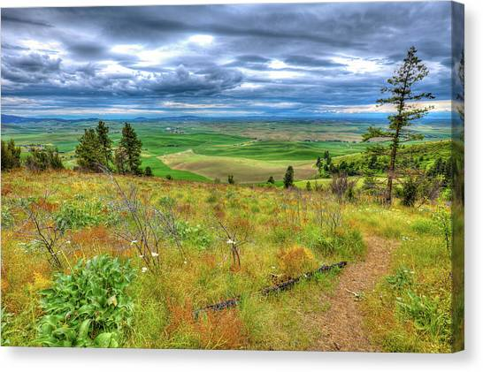 Canvas Print featuring the photograph The Path Down Kamiak Butte by David Patterson