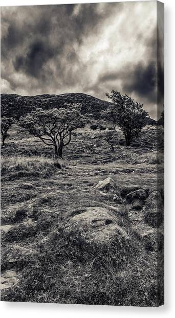 The Path Up Slemish Canvas Print