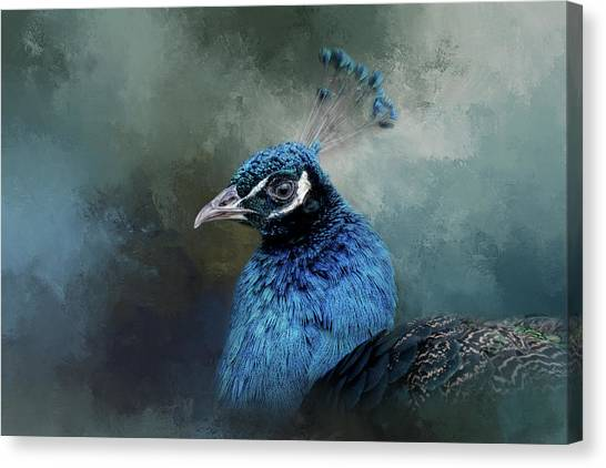 The Peacock's Crown Canvas Print