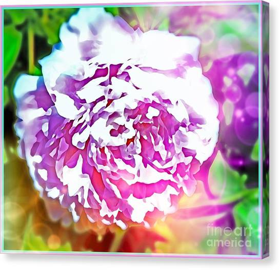 Canvas Print - The Peony by Mindy Newman