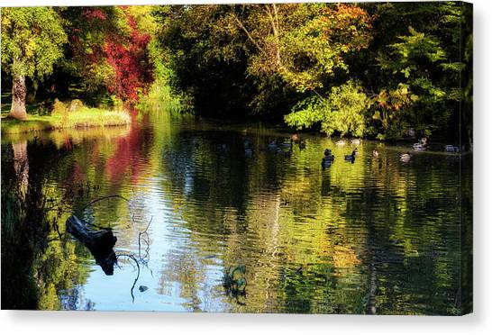 Canvas Print featuring the photograph The Pond At Inglewood House by Jeremy Lavender Photography