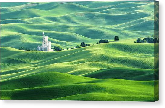 The Rolling Fields Of Palouse Canvas Print