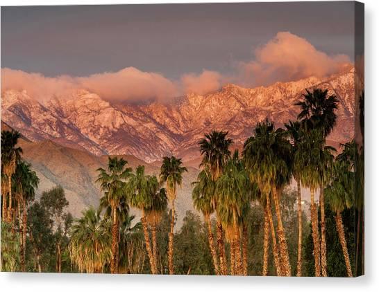 The San Jacinto And Santa Rosa Mountain Canvas Print by Danita Delimont
