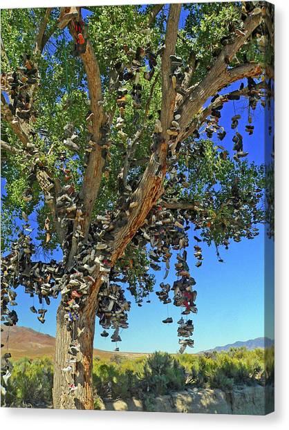 The Shoe Tree Canvas Print