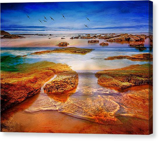 The Silent Morning Tide Canvas Print