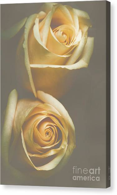 Nature Still Life Canvas Print - The Soft Shadows by Jorgo Photography - Wall Art Gallery