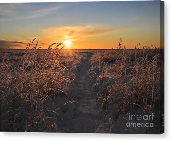 Susan Canvas Print - The Sun Sets In The Anchorage Coastal by Susan R. Serna