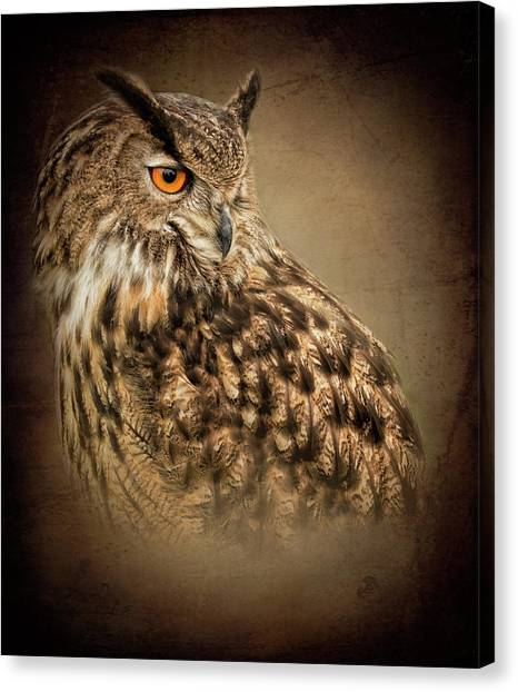 The Watchful Eye Canvas Print