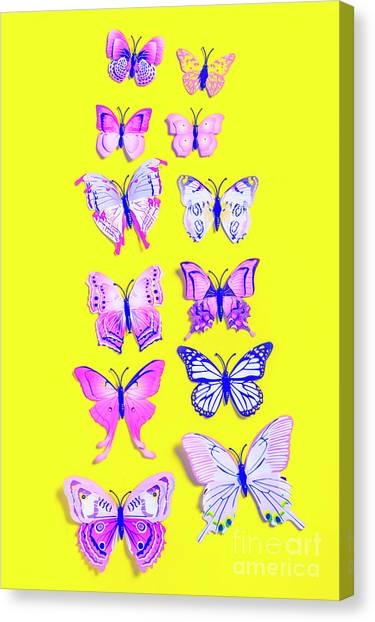 Yellow Butterfly Canvas Print - The Yellow Bug Road by Jorgo Photography - Wall Art Gallery